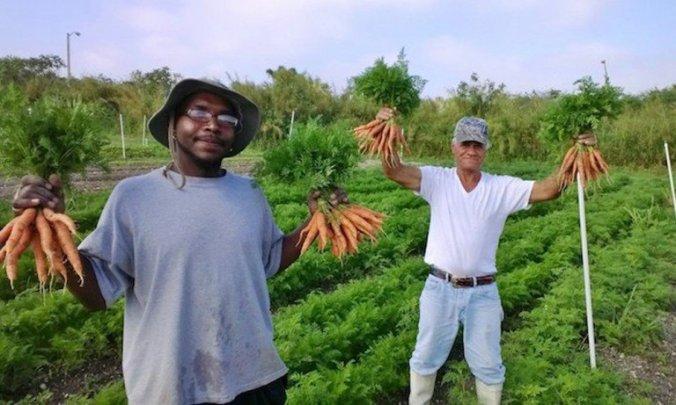fazenda-organicos-moradores-de-rua
